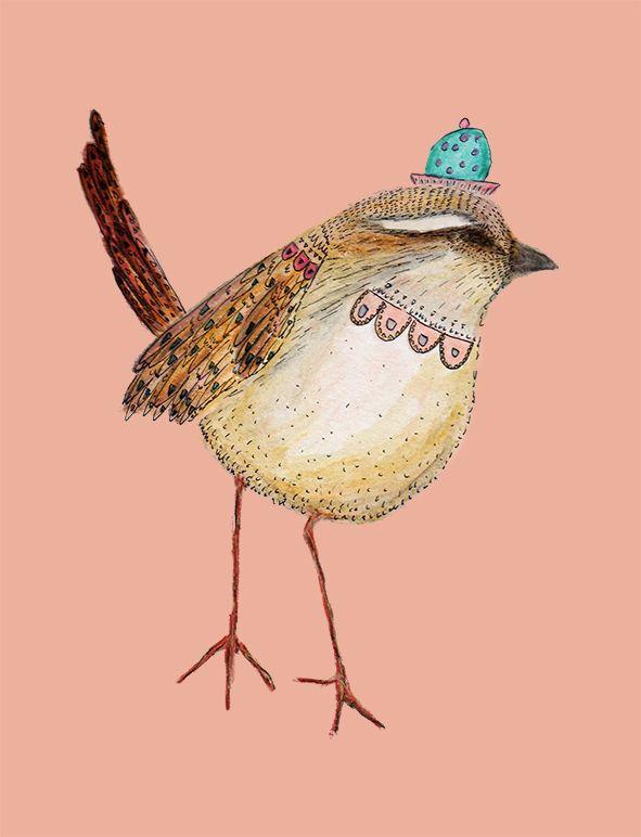 Aves emblemáticas chilenas: Tapaculo Isabel Cerda www.isabelcerda.com