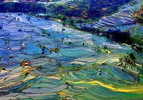 紅河哈尼棚田,元陽観光スポット,元陽見所案内 ふれあい中国