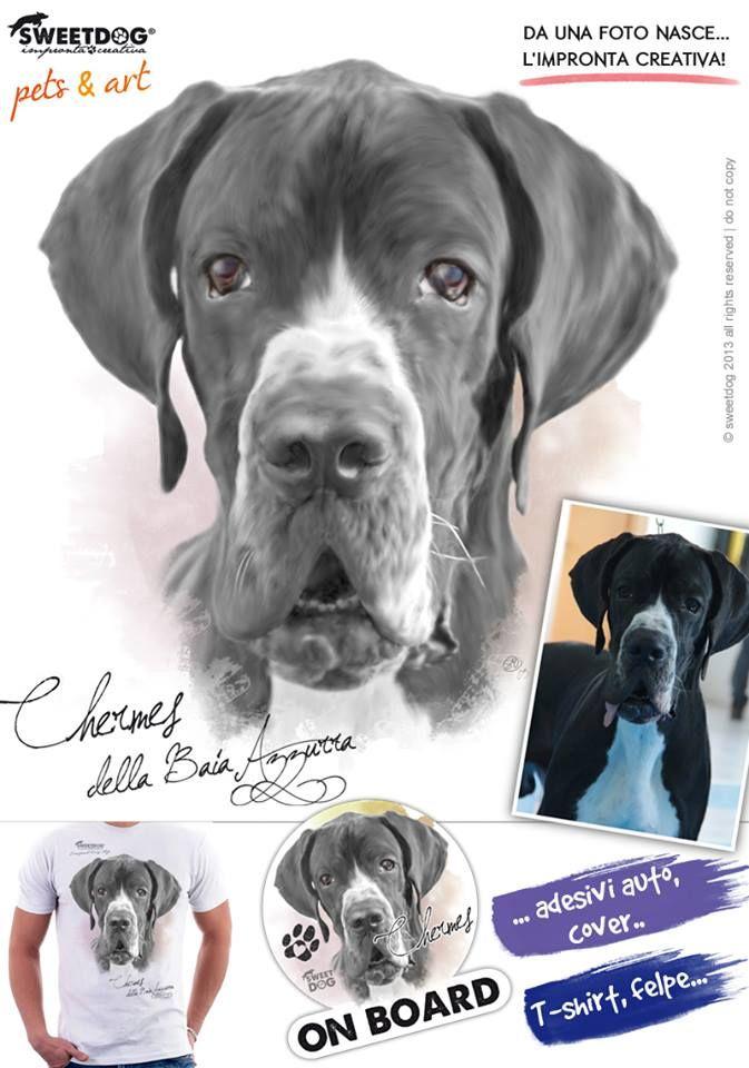 DOG: Chermes della Baia Azzurra (German Mastiff aka Great Dane) | Personalized T-Shirt