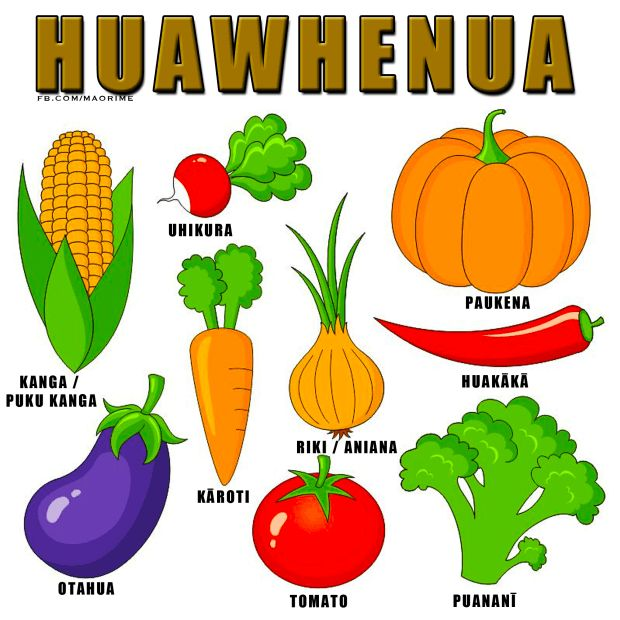 Hua Whenua : Vegetables