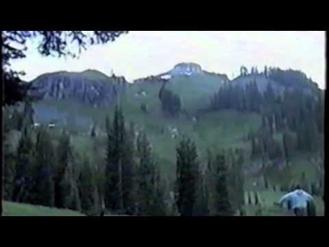 """""""This Video footage of Bigfoot was taken in June, 2001 By Jim Mills the leader of the youth group """"Campus Life"""" on the annual Marble Mountains backpacking trip. This is the longest know video of bigfoot ever recorded. In no way was this faked or some kind of hoax"""" ~ says Purple Wookies on youtube.com"""