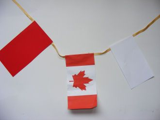 do a little flag for each country you learn about and make a garland by the end of the year......