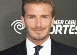 David Beckham Net Worth Net Worth Revealed to the Public. Find out how much Soccer Star David Beckham is worth by clicking on his picture