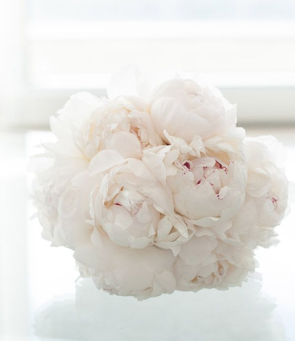 Salvatore's Chicago Weddings  Elegant white peonie bouquet