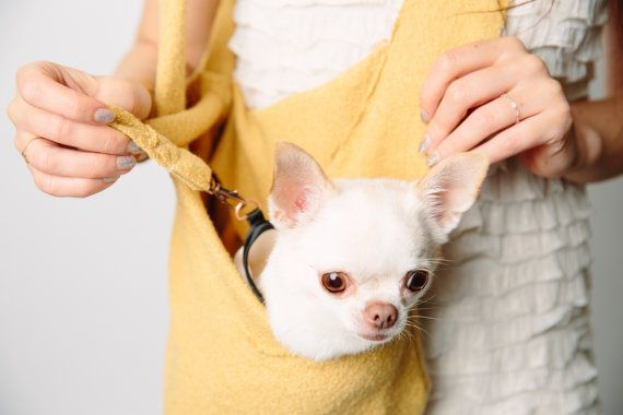 85 Best Images About DOG SLINGS On Pinterest