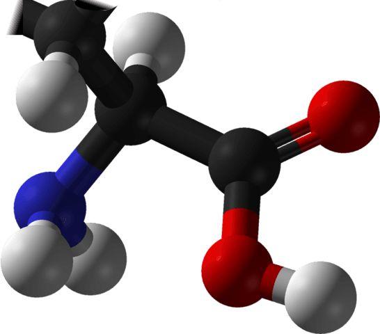 Aminoácidos esenciales – Que son, funciones, dosis, alimentos, comprar