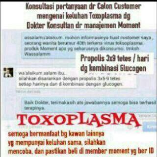 Menangani keluhan kesehatan akibat Toxoplasma, solusinya adalah : 1. Propolis Moment 2. Glucogen Moment  Pastikan selalu anda membeli produk Moment yang asli, dari distributor yang memiliki ID member.  Hub : Atik Sms/Line : 081703300975 IG : #atik_moment Https://sites.google.com/site/mymomentinfinity