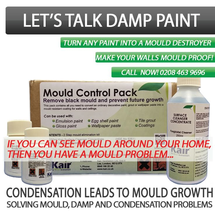 Now You Can Turn Any Paint into a Mould Destroyer Make