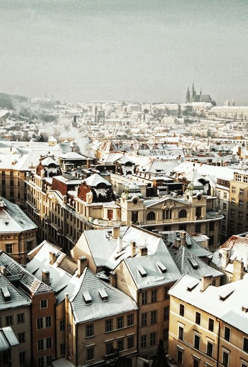 snow-capped buildings | prague