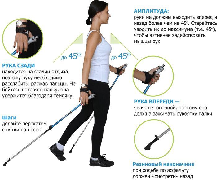 Нордическая ходьба поможет сжигать 700 калорий за час
