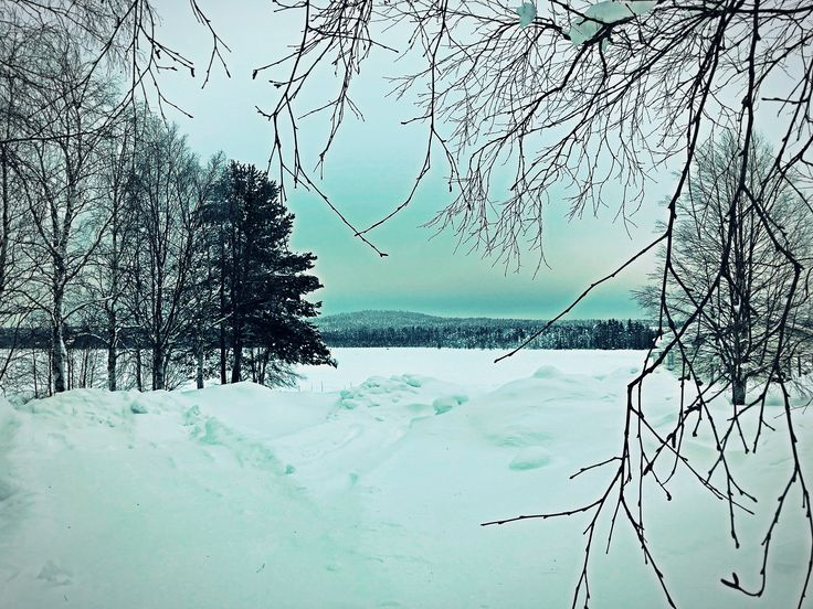 19.. #nature #naturelovers #art #artlovers #artwork #forest #sky #dream #photography #snow #twitter #new #photo #photos #pic #pics #trees #tree #korpilombolo #norrbotten #sweden #sverige #colorful #via #me #mine #my #message #love #life #world #memories #story #fantasy 20..