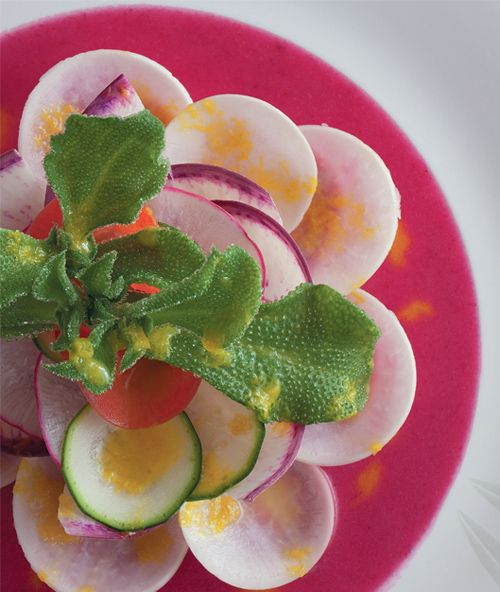 Daikon & Turnip Salad:  Nobu Matsuhisa's vegetarian cookbook is so gorgeous that we half wonder if it should be placed in the art rather than cooking section (its publisher is art heavyweight Rizzoli). The master of Japanese cuisine (and genius behind the Nobu restaurants) turns standard root vegetables into something magic with his refreshing take on salad. #Recipe #Cooking #easysalads