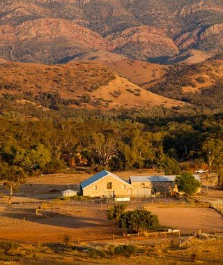 Arkaba Station, Flinders Ranges National Park, South Australia