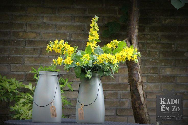 Jippie dit is leuk en ook nog eens multifunctioneel zowel voor op je terras of in huis.  Als windlicht of vaas,  JIJ KAN KIEZEN!!