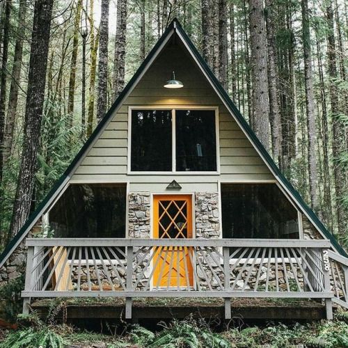 Symmetry and a splash of color = On Point in the Woods of Washington.