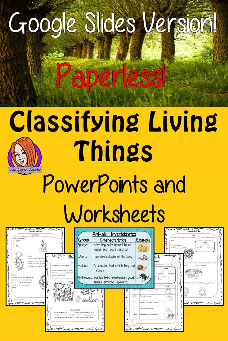 Classifying Living Things Google Slides Presentation Digital Interactive Worksheets Teach Children About Digital Lessons Elementary Science Classroom Lesson