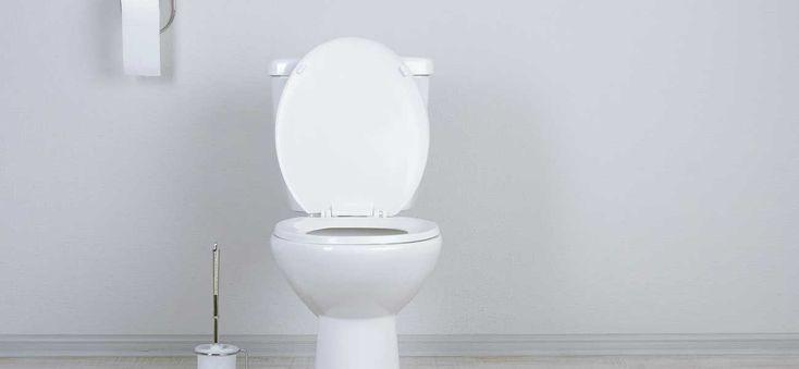 Installation WC broyeur : La pose nécessite un raccordement assez simple, mais aussi quelques précautions à respecter - Tout sur Ooreka.fr