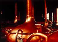 Photo of brewing vessels
