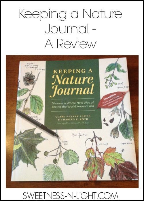 nature journal essay What is a nature journal a nature journal is a place to grow your thoughts, feelings, ideas, activities, observations, and relationship with the natural world.