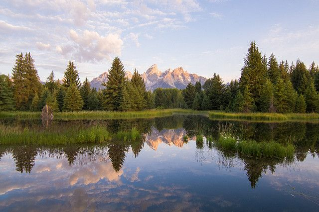 Grand Teton from Schwabacher Landing | Here's another shot o… | Flickr