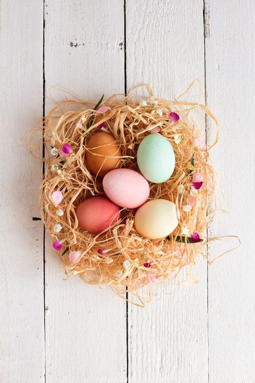 Oeufs colorés: Decor Eggs, Dyes Eggs, Birds Nests, Colors Eggs, Easter Eggs, Happy Easter, Dyed Eggs, Eggs Nests, Easter Ideas