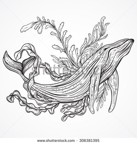 Awesome Ocean Plants Coloring Pages 86 Collection of whale marine