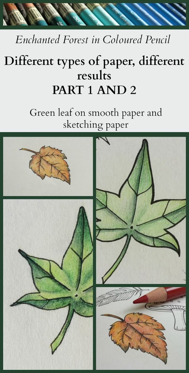 Passion for Pencils: A green leaf from Enchanted Forest - twice on different types of paper