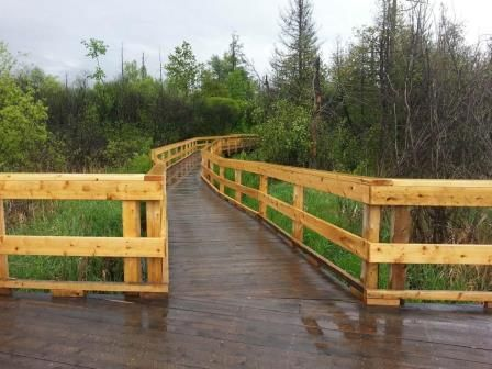 The Leitrim Boardwalk takes visitors along a 500m path through this provincially significant wetland south of the Findlay Creek community.