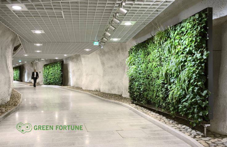 Plantwall in Helsinki Finland - vertical garden, green wall, groene wand, interior, living wall