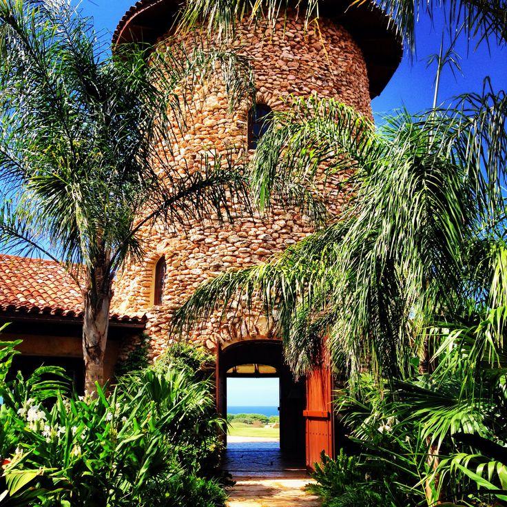 Best 25+ Isabela Puerto Rico Ideas On Pinterest