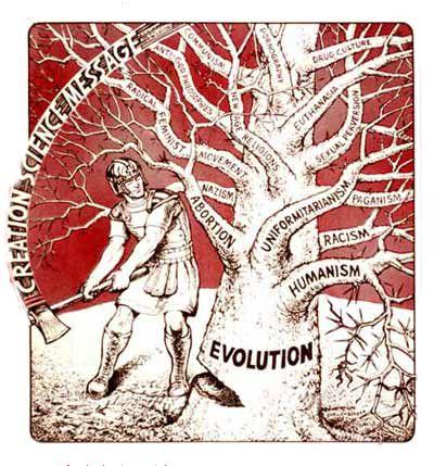 Anticorpi.info: Teoria dell'Evoluzione: 44 Ragioni che la Smontano...