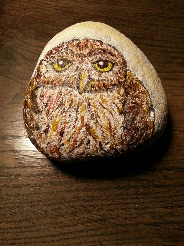Owl painted on a stone