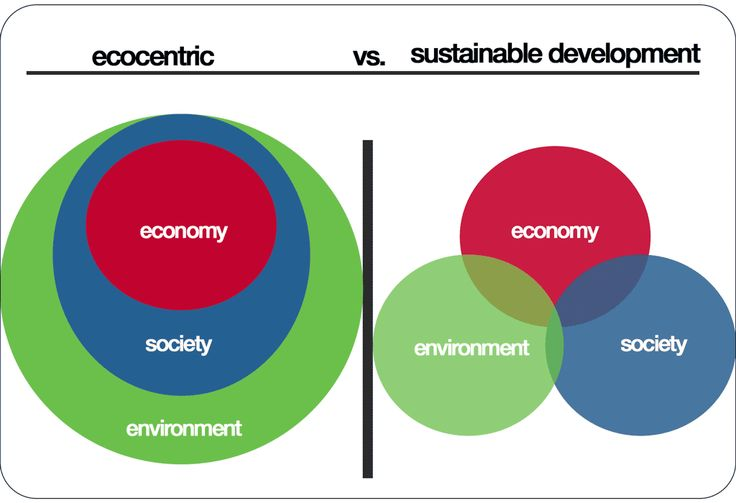 Ecocentric is a type of environmentalism taking the view that large-scale ecological processes such as evolution, adaptation, and biogeochemical cycling are the most important aspects of nature. Mo…