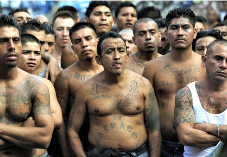 """Almost one-third of 214 U.S.-based MS-13 gang members arrested in an international sweep were invited into the United States by President Barack Obama's """"Unaccompanied Alien Children"""" policy. The successful """"Raging Bull' sweep was announced by..."""