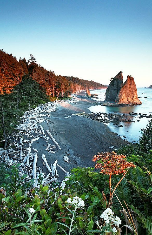 Rialto Beach, Olympic National Park, WA This was my first back packing trip! A photo just like this, hangs in my entry hall.