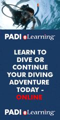 Academy of Scuba    PADI Open Water Diver Course, Learn to dive Melbourne -