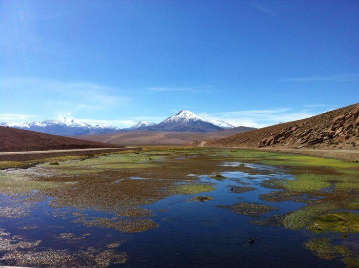 Humedales, Pueblo de Machuca, San Pedro de Atacama, Chile.