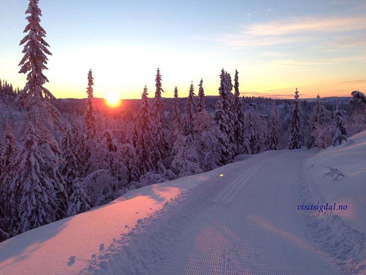 Crosscountry skiing in Eggedal Mountain, 2 hours from Oslo. Perfekte skiløyper i Eggedalsfjellet, 2 timer fra Oslo. Visitsigdal.no