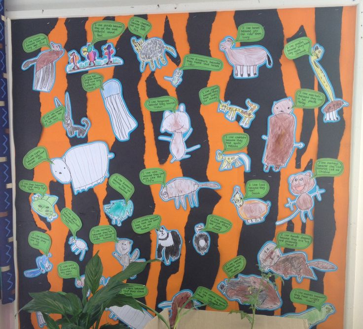 Reception's favourite animals display. Picture of their favourite animal and speech bubble saying why it is their favourite. #animal display #reception #eyfs
