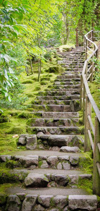Mystery steps