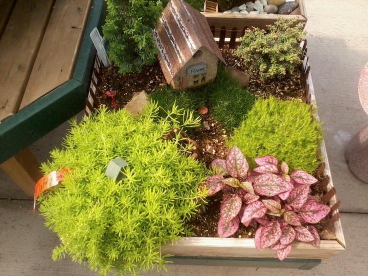 52 Best Fairy Gardening Images On Pinterest Fairies Garden Fairy Gardening And Miniature Gardens
