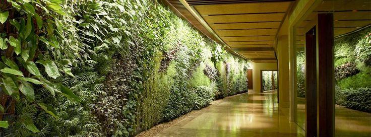 Vertical Garden | Doğal ve Biyolojik Yapı İnşaası
