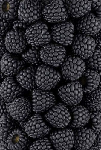 #Black: The Beauty of Blackberries! (If you want to grow gorgeous organic fruit like this we have just the right organic fertilizer to do it - EarthPods available from our site) Loved by chicncheeky.com.au http://ift.tt/2o3eqCe