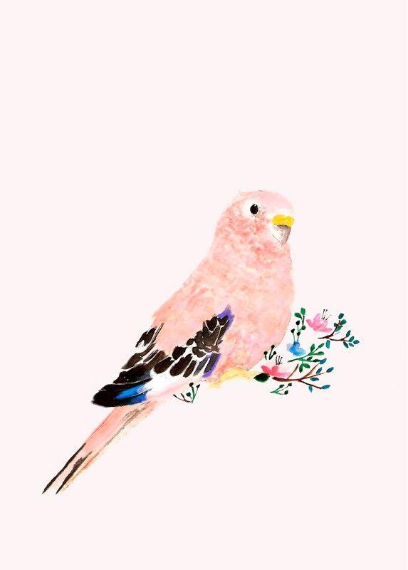 Affiche Illustration Peinture d'Oiseau de Daniela Dahf Henriquez