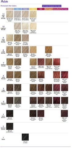 Ion Color Brilliance on Pinterest | Ion Hair Colors, Manic Panic and ...