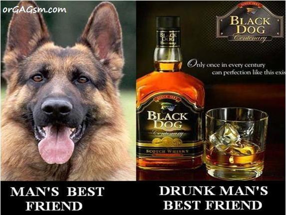 Man's best friend forever