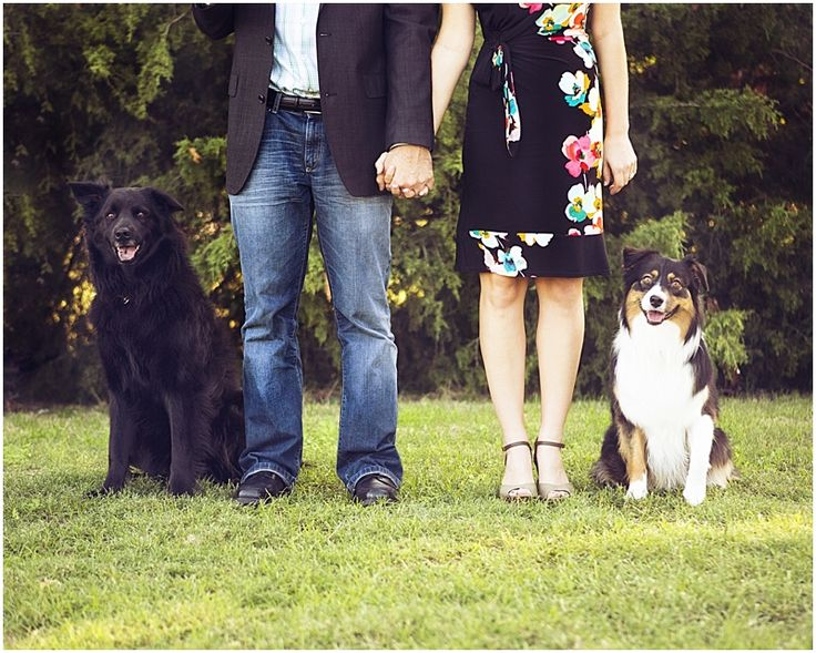 Engagement Portraits With The Dogs Theyre Family