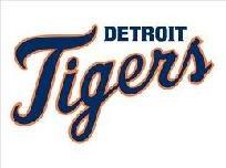 Detroit Tigers Cross Stitch Pattern pdf