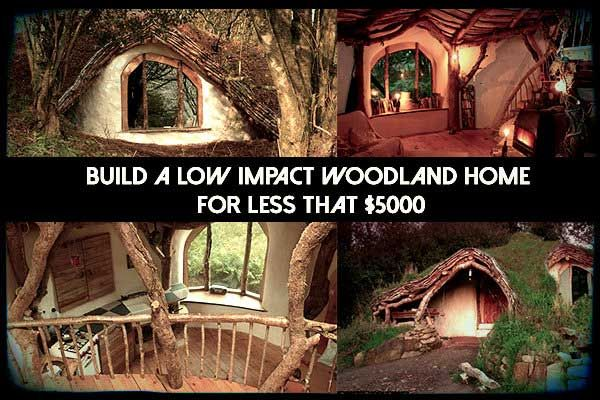 Build A Low Impact Woodland Home For Less That $5000 - I'd love a Hobbit Hole with a green roof...