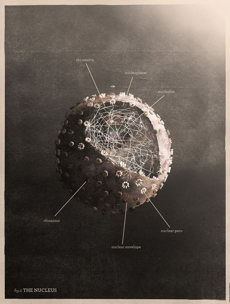 Quarks, Nucleons, Atoms,  Science and art... combined. LOVE!
